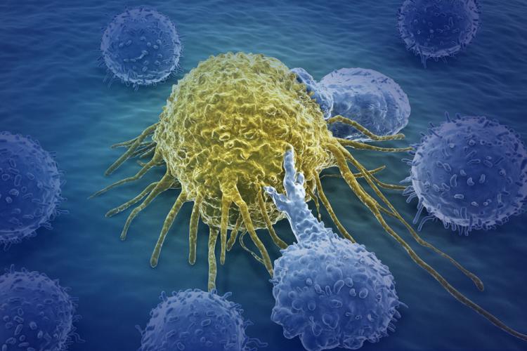 Fattore K. Cancro. Tumori, 37 molecole innovative approvate in cinque anni